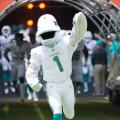 miami dolphins 2020 season